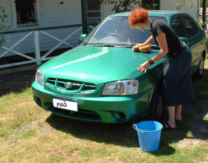 car washing on lawn