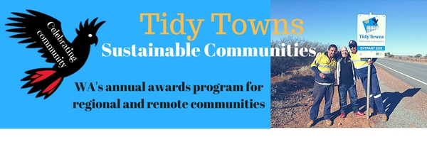 tidy towns header
